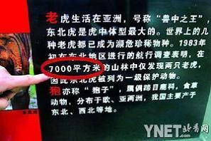 自然博物馆展板说明出错搞晕学生:公里变成平米