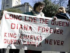 反对者们手中拿着纪念黛安娜的条幅