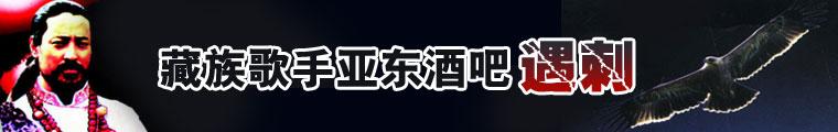 藏族歌手亚东酒吧遇刺