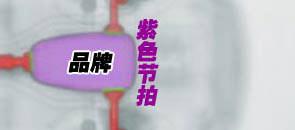 品牌 紫色节拍