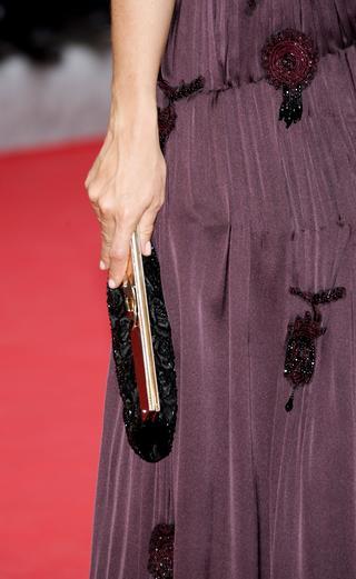 组图:戛纳影展红地毯的风情万种-手提袋篇