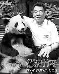 """赠台大熊猫将入住耗资2亿新台币""""五星级宾馆"""""""