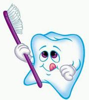 牙齿是由什么组成的?