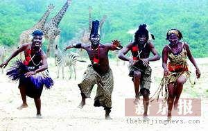 非洲成人影视_坦桑尼亚艺人北京演出 斑马跟着非洲人起舞(图)