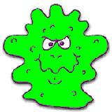 细菌是什么?