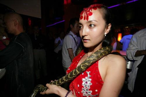 组图:浮华之夜狂欢-美艳红衣女蛇舞动四方