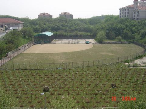 十运会场馆:南京工业大学垒球场