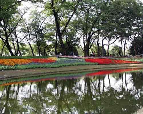西湖美景:柳浪闻莺