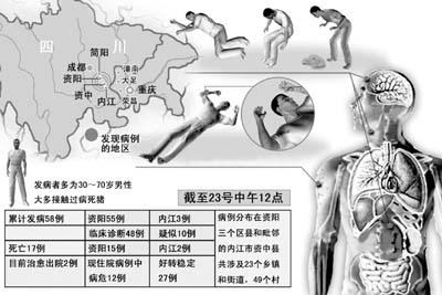 病人发病初期均出现高热,乏力,恶心和呕吐; 四川怪病初步诊断:人-猪