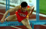 图文:史东鹏无缘110米栏决赛 竭尽全力