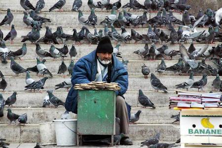 去土耳其看不够风景和美人[图]