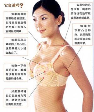 """[爱护乳房]让""""双峰""""远离胸罩综合症"""