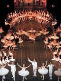 舞团精彩图片