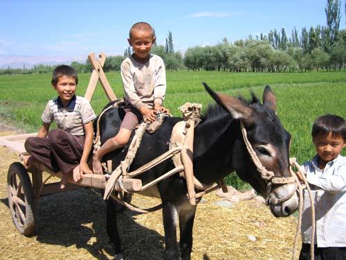 新疆人物(二):骑手(图)