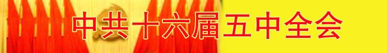 中共十六届五中全会