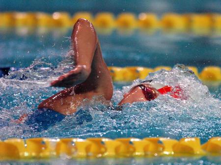 图文:十运会游泳决赛