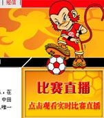 2004亚洲杯