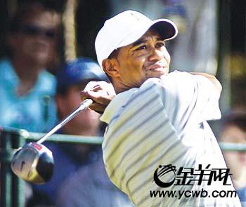 """汇丰高尔夫冠军赛:伍兹辛格上海""""比洞""""(图)"""
