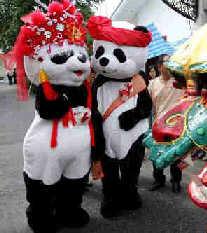 """泰国为两只中国大熊猫举行中国式""""婚礼""""(图)"""