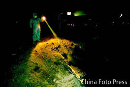 北京预防禽流感 健康活禽填埋5米深沟(图)