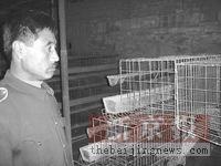 辽宁禽流感疫区首例发热患者的15天(组图)