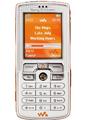 索尼爱立信 W800c