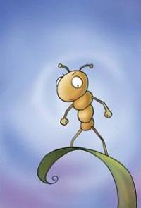 我靠!一只好牛B的蚂蚁