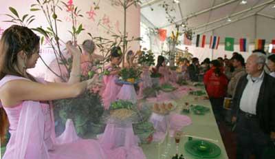 重庆美女摆上酒桌 商家称与女体盛不同 搜狐财经