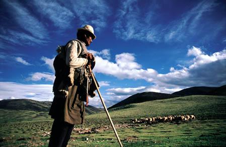 生命的颤音——西藏之旅