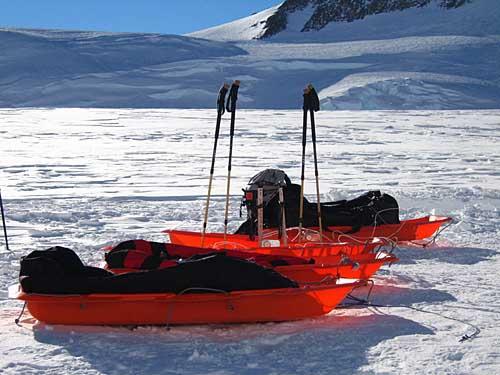 """陪伴探险队员南极探险最值得信赖的""""朋友"""""""