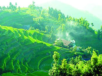 我省崀山风景区,衡山,新化县紫鹊界梯田日前正式被国家建设部列为国家