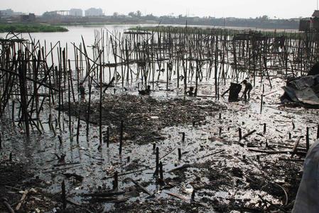 孟加拉国首都贫民区发生火灾 3000多人无家可归