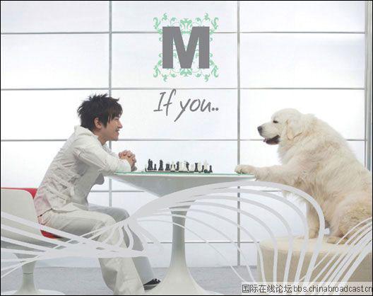 组图:亲密无间 揭密众明星们的狗年密友