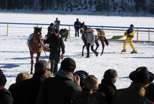冰上马球赛: