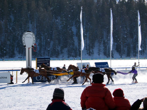 冰上马球赛:激烈竞技
