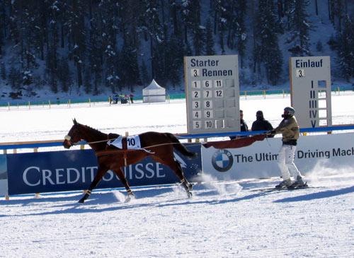 冰上马球赛:个人风采