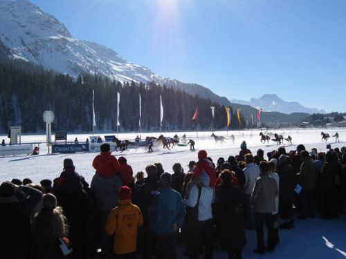 冰上马球赛:享受生活
