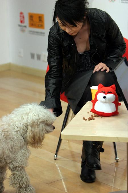 张恒携爱犬做客搜狐 性感低胸险些走光(组图)