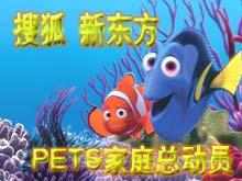 搜狐新东方PETS家庭总动员