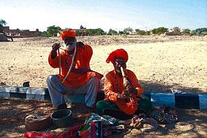 巴基斯坦蛇人部落探秘:把毒蛇当成嫁妆(图)