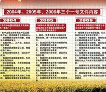 2006年中央一号文件