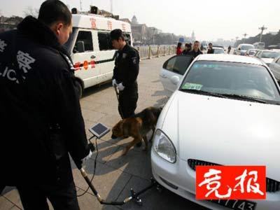 20条警犬用于两会安检