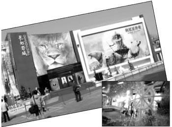 影院各出新招PK《纳尼亚传奇》首映式(组图)