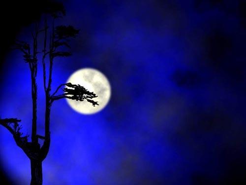 [差点儿]差点儿我就摘到了月亮