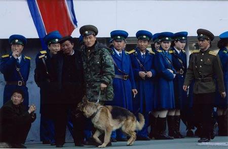北朝鲜警察带警犬介入球场的争执.