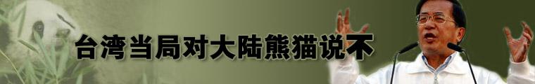 赠台熊猫组合揭晓