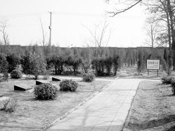 """山西烈士陵园开发430处私人墓 """"烈士""""成卖点"""