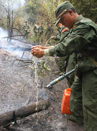 云南安宁森林火灾得到基本控制