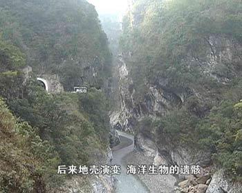 泉灵游台湾:特色台湾