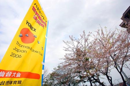图文:汤尤杯开战在即 宣传画与樱花争艳